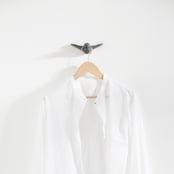 schwarz-vogel